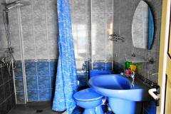 Всяка стая има собствен санитарен възел
